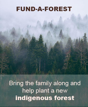 Fund a Forest